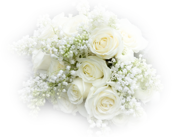 Bouquet de roses blanche