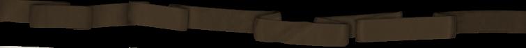 lanière marron