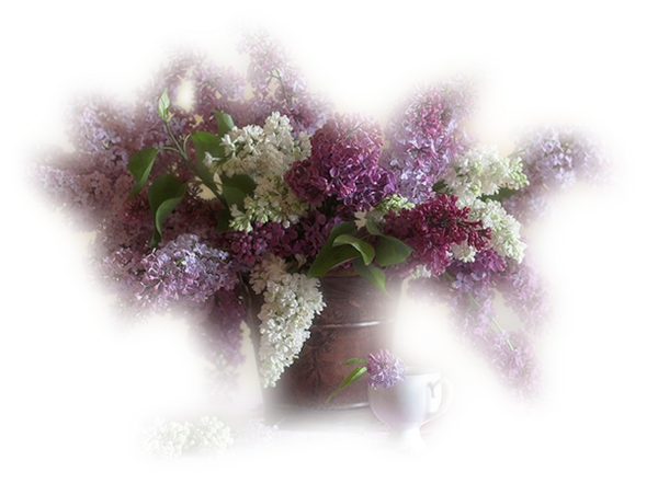 Vase de Fleurs Lil@s