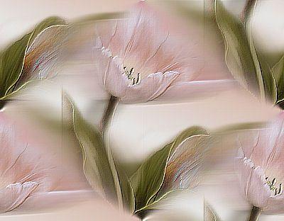 Texture fond de fleurs