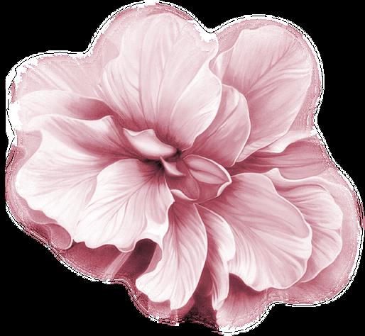 Panaché de Fleurs Roses pastel
