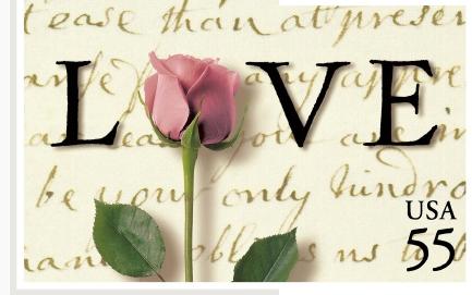 Rose rose sur feuille d'écriture..