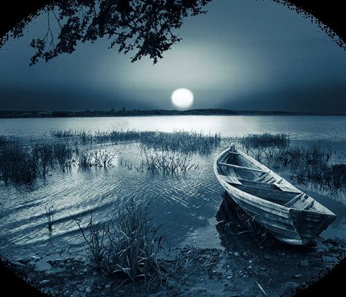 paysage bleuté sur fond d'eau