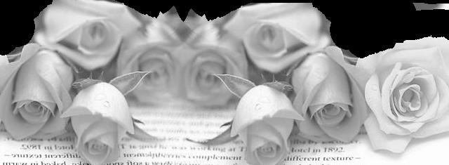 roses sépia