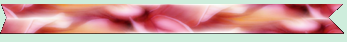 Bandeau fleurie 2