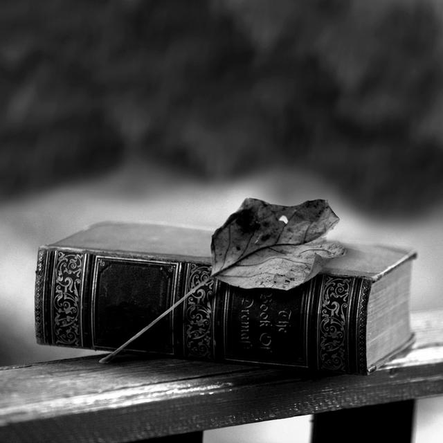 livre gothique