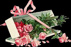Panier De Roses Rose