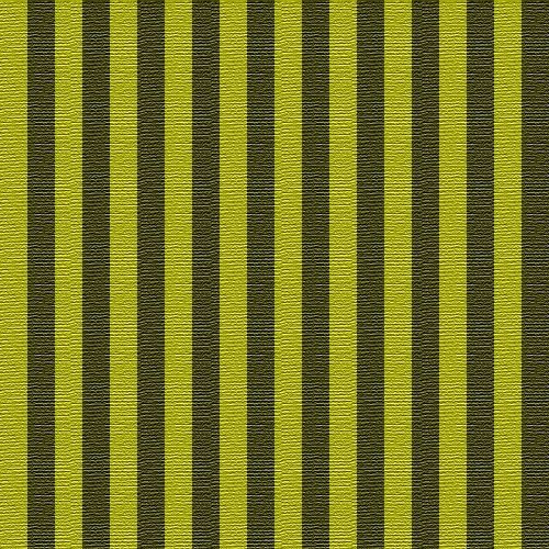 Rayures Verticales Noir Et Vert